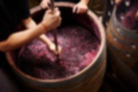Wie man Wein macht