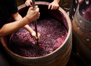 marmelade Weine gegen Natural Wine