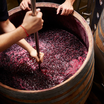 Visitas a bodegas y eventos del mundo del vino