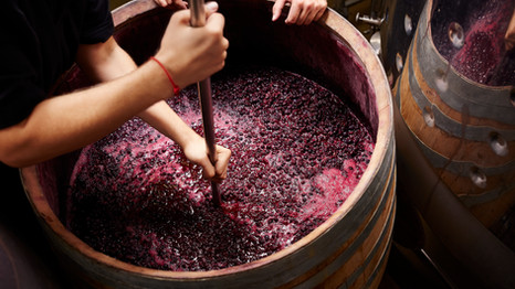 Bottle Your Own Wine: Become a winemaker for a day
