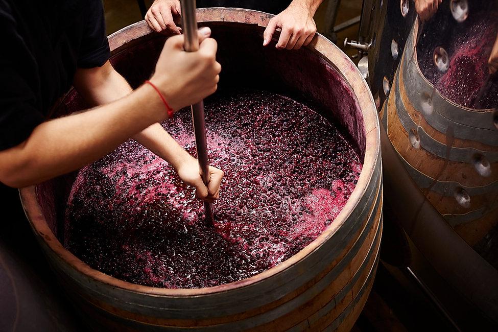 Winemaking in Philadelphia
