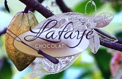 logo-lafaye-chocolat_edited.jpg