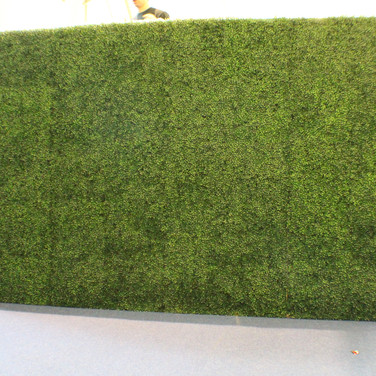 Boxwood Wall