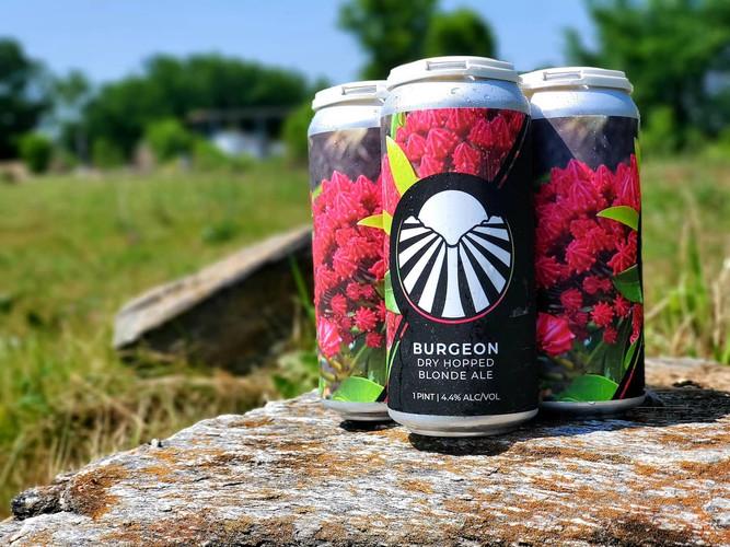 Burgeon Blonde Ale