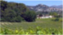 AllauchBouches-du-RhôneFrance-vue-des-vi