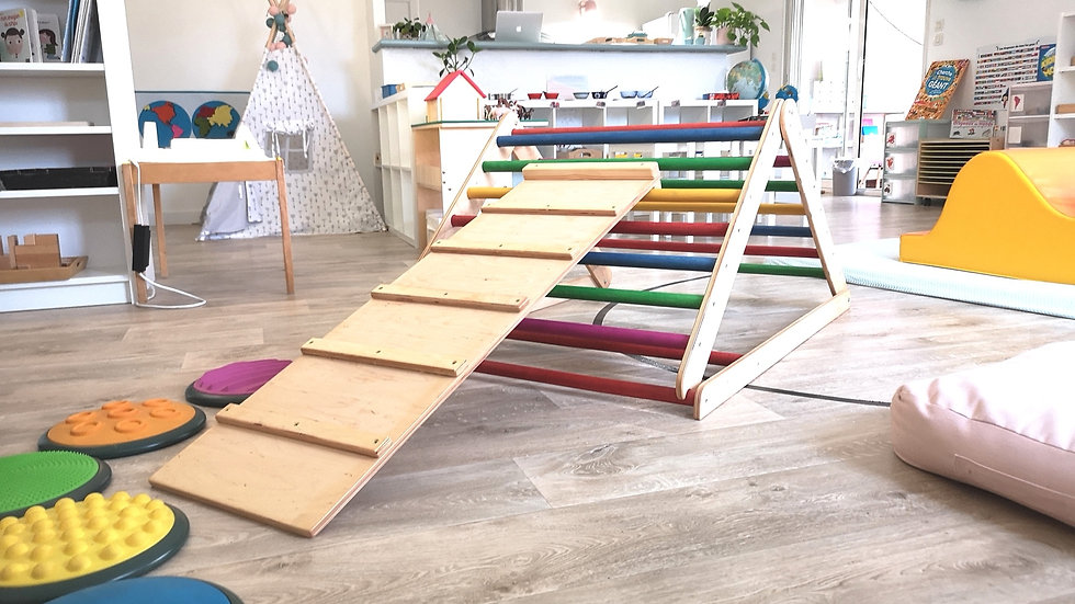 Offrir une ou plusieurs séance(s) Montessori 6 mois/3 ans