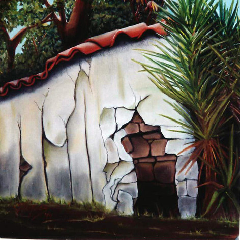 La tapia en ruinas