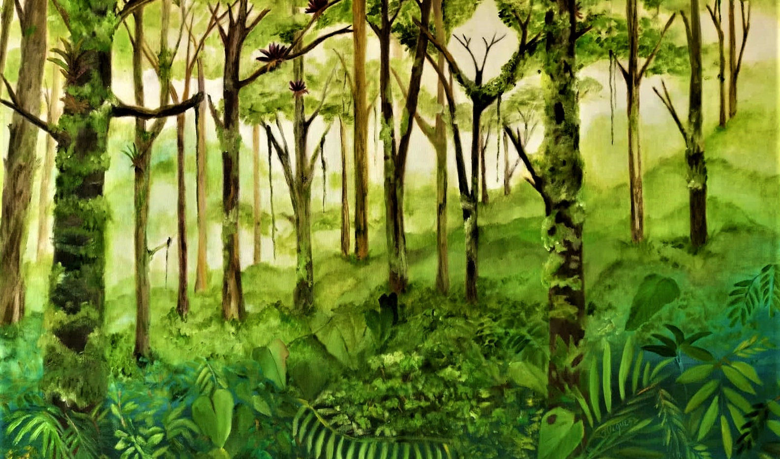 Bosque nuboso pareidólico