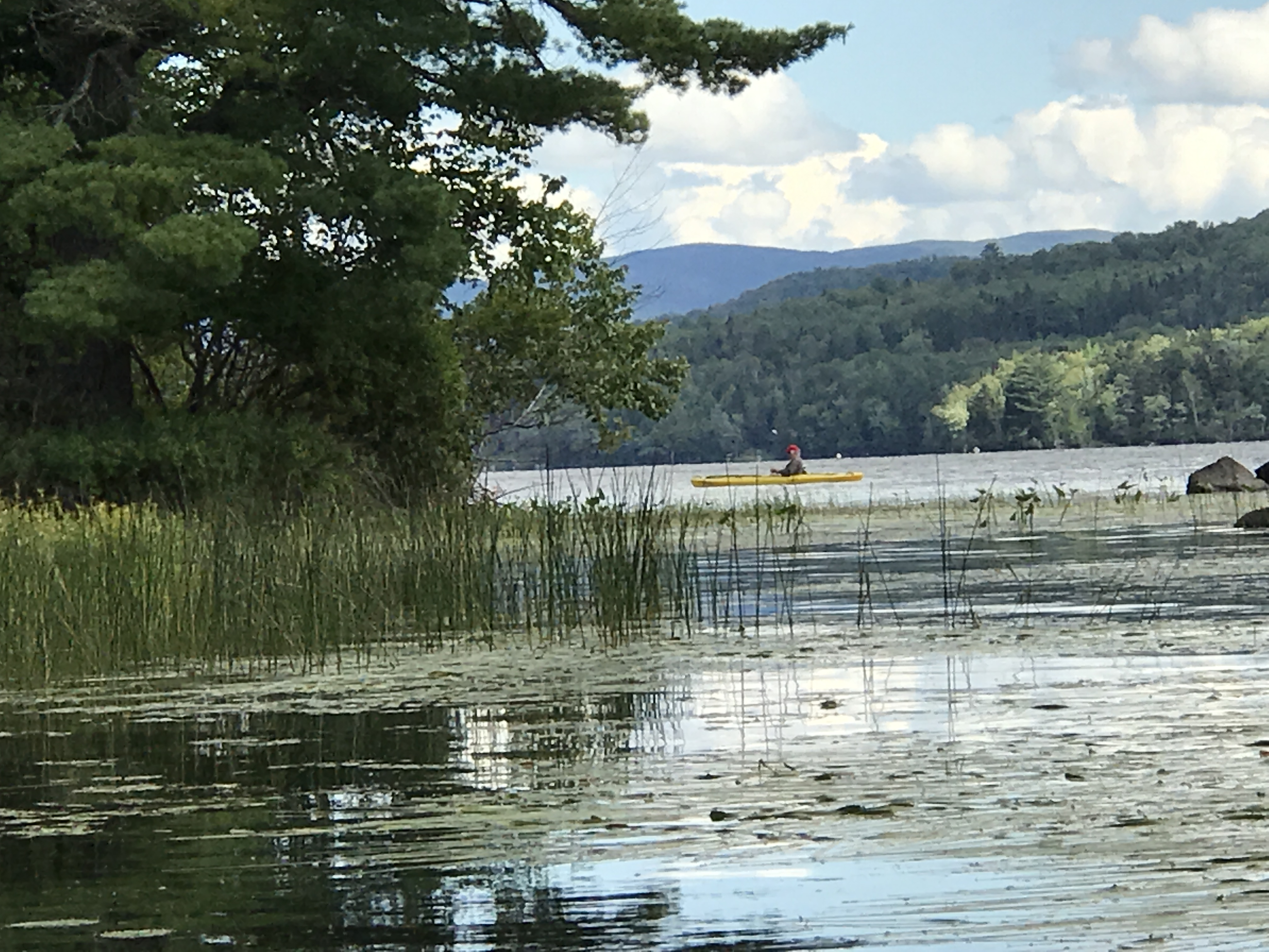 Exploring secluded lakes, see loons