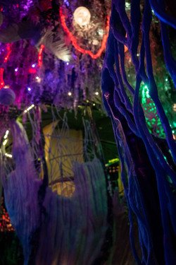 Meow-Wolf_0951