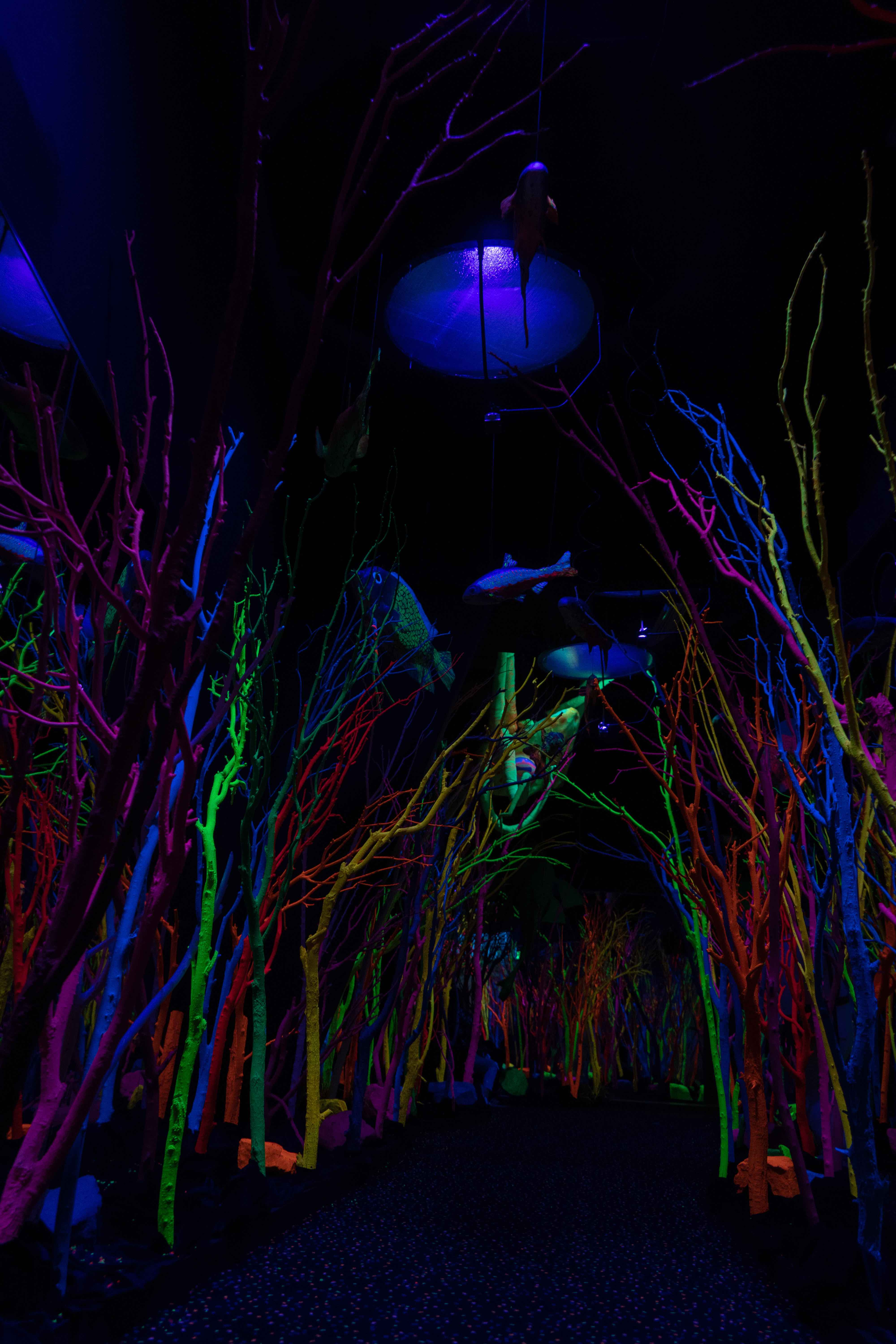 Meow-Wolf_0887