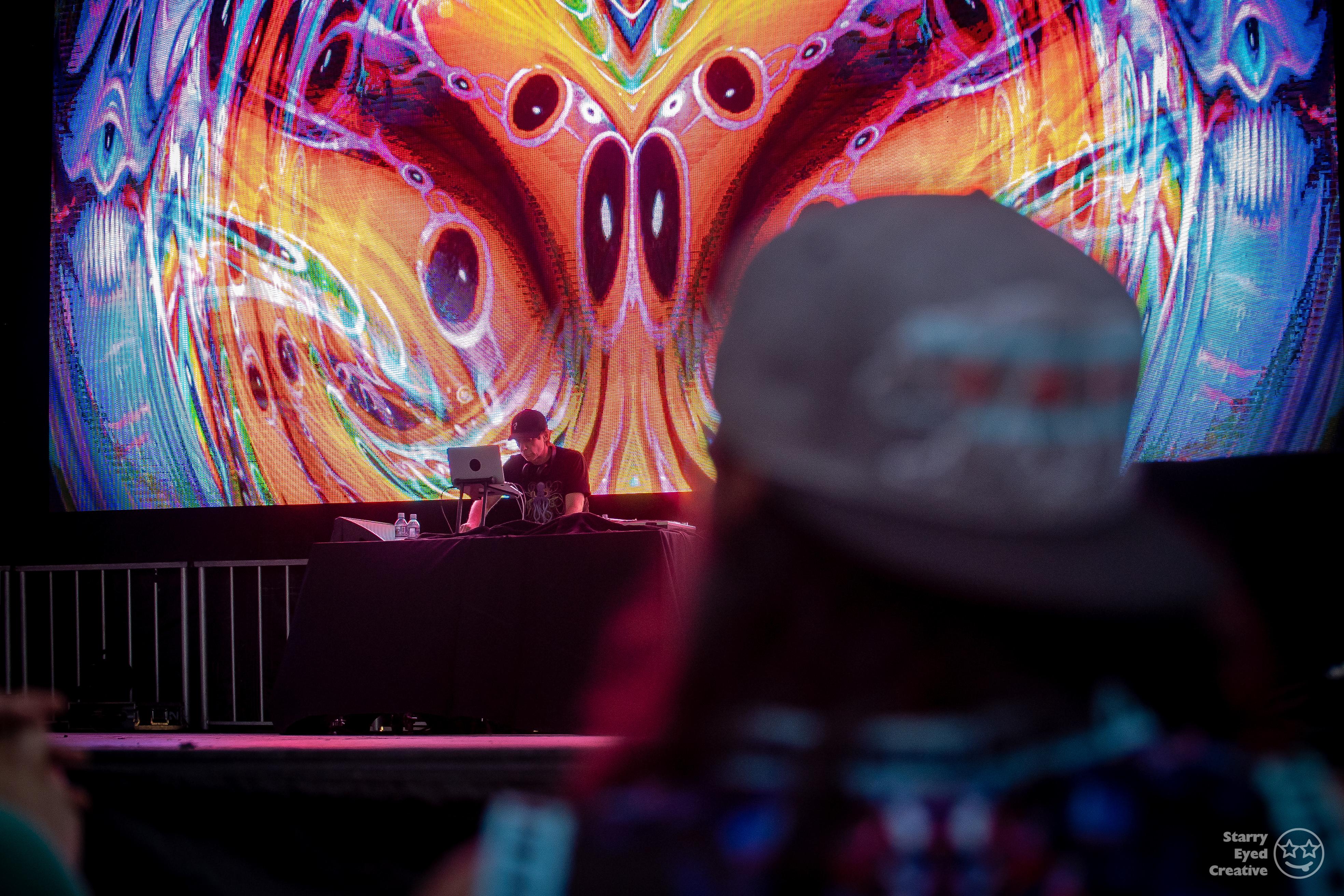 2019_Arise_Music_Festival-2872