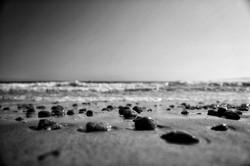 Horseneck Beach, Mass.