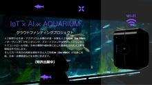 IoT × AI × AQUARIUM|スマートアクアリウム(特許出願中)|IoT AQUA bit|クラウドファンディングプロジェクトサイトオープン