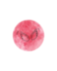 wings+circle+.png