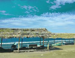 Beach Manta-art