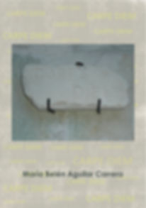 Front cover of book Carpe Diem