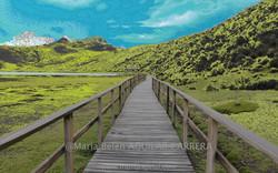 Bridge-art Cotopaxi National Park