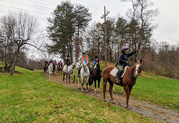 Betsy Parker leading Nov. 15 trail ride.