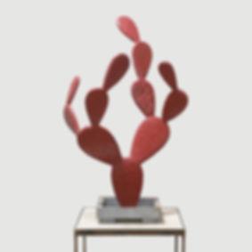 cactus_rouge.jpg