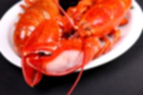 Mulligans Lobster 5.JPG