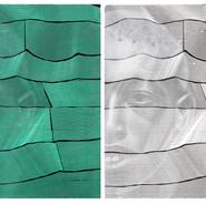 Anacoluto Óleo sobre tela 100x 80cm (cada) díptico 2014