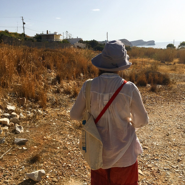 FORAGING IN SYROS
