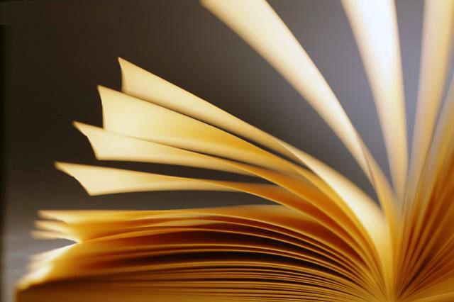Ler é uma viagem