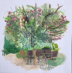 chelsea physic garden-s