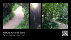 Nature guided walk
