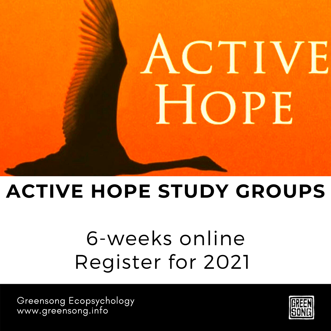 ACTIVE HOPE STUDY GROUPS