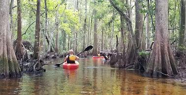Guided Kayaking Tours Orlando Kissimmee
