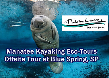 Manatee Kayaking Eco Tours Blue Spring S
