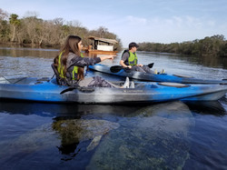 Manatee Kayaking Tour, Blue Springs State Park, Orange City FL (4)