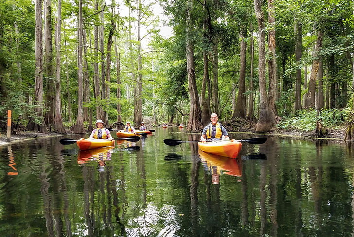 Kayak Adventures in Florida Eco Tours Or