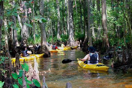 Advanced Kayaking Tour Kissimmee Orlando
