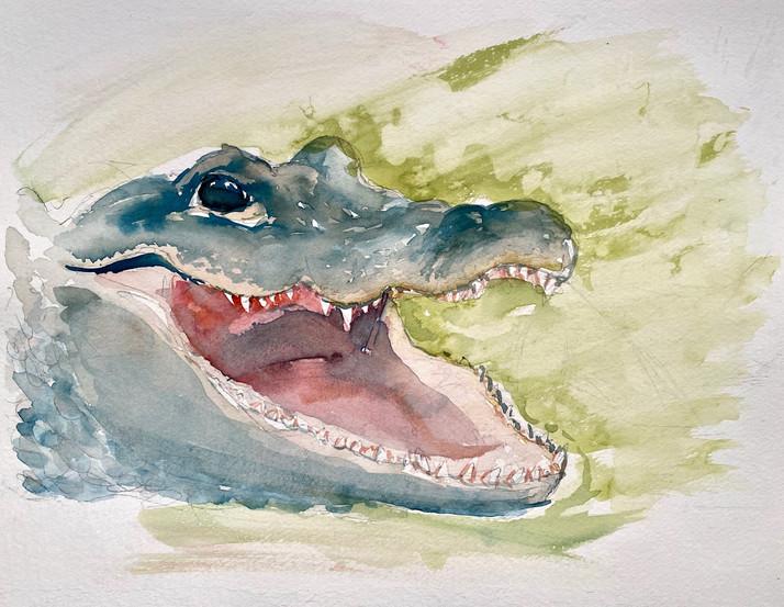 Alligator Smiles