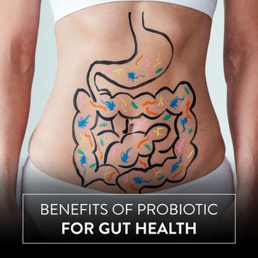 5 Benefits of Probiotic for Gut Health