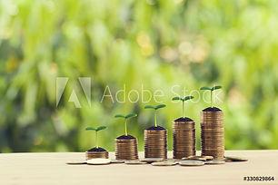 AdobeStock_330829864_Preview.jpeg