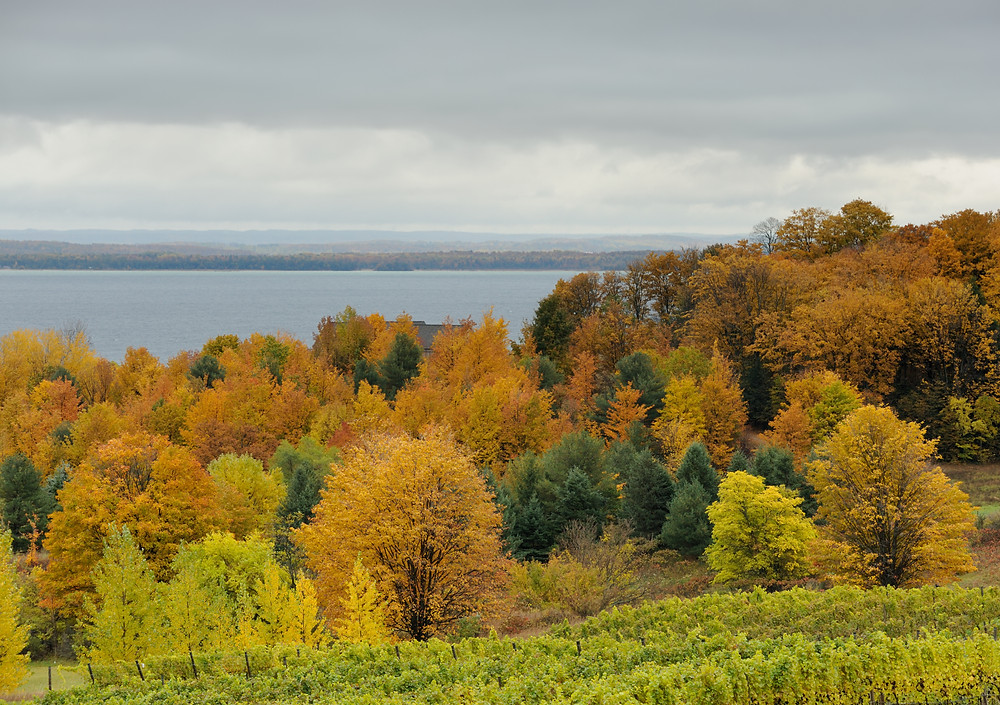Traverse City in the fall | FTLO Travel | Group Trips for Young Professionals