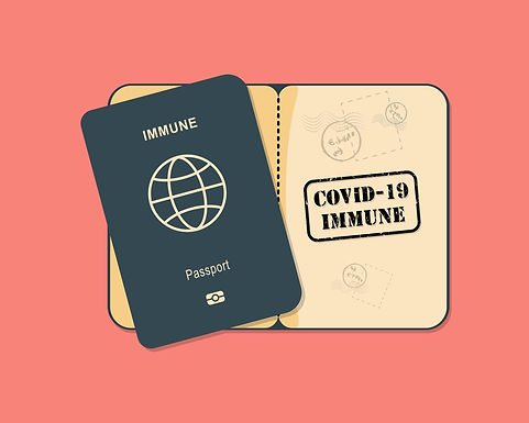 What is an Immunity Passport?