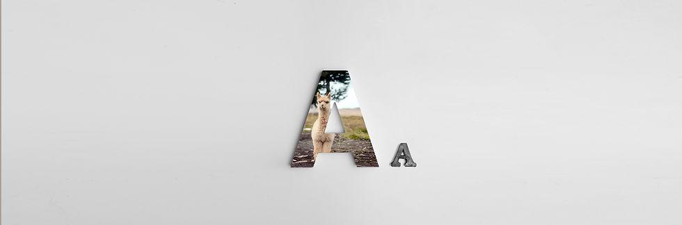 alexander-andrews-zw07kVDaHPw-unsplash.j