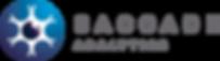 saccade-analytics-logo-retina.png