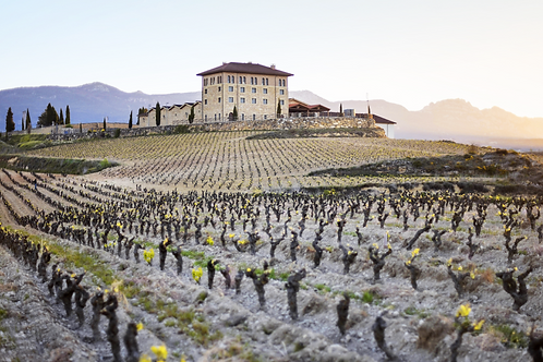 ONE-WEEK LA RIOJA PROGRAM