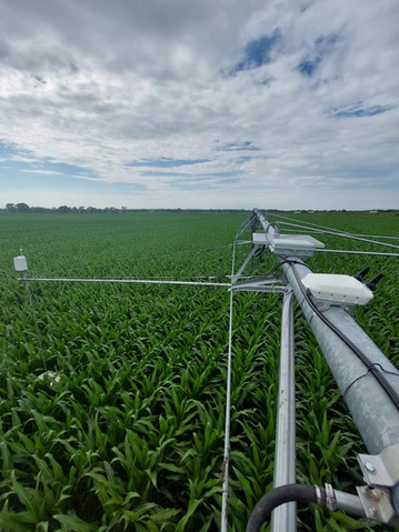 On corn field, Nebraska 2021