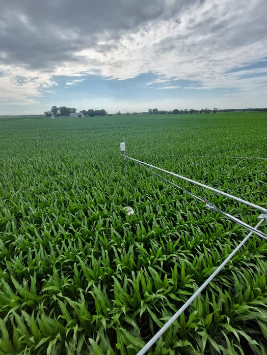 The non-invasive soil-moisture-sensor is cruising through a corn field in Nebraska
