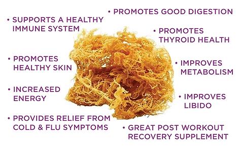 The_Purple_Flip_Benefits_of_Sea_Moss.png