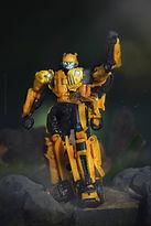 Bumblebee hand raise.jpeg