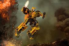 Bumblebee jump.jpeg