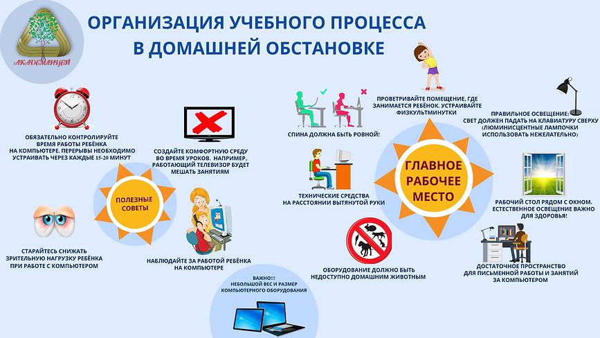Организация учебного процесса в домашних